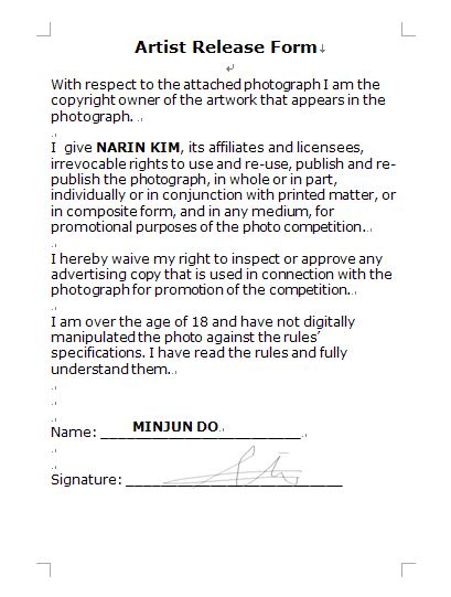 Artist Release Form  Chloe Kim